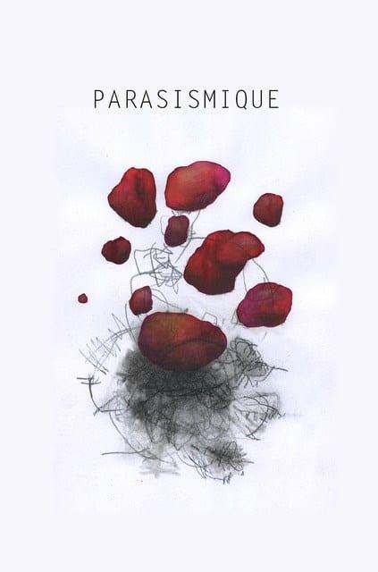 Parasismique 2 et 3 Décembre 2019